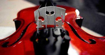 Convocatoria para configurar listas de reserva de personal para violín, viola, violonchelo y contrabajo. Orquesta Sinfónica de Tenerife