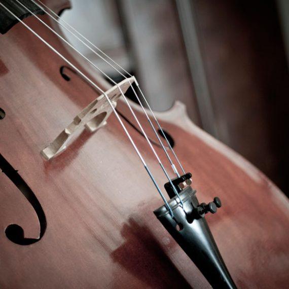 Audiciones para 1 plaza de Violonchelo (prácticas) en la Orquesta Sinfónica de Navarra