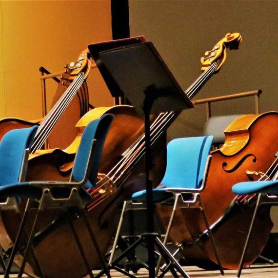 Audiciones para Contrabajo principal en Oviedo Filarmonía